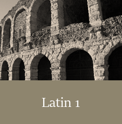 Latin 1, Live Online High School Course