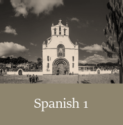 Spanish 1, Live Online High School Course
