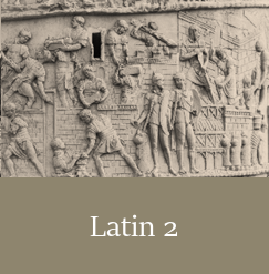 Latin 2, Live Online High School Course