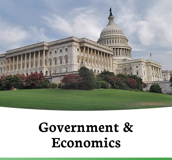 Government & Economics Courses